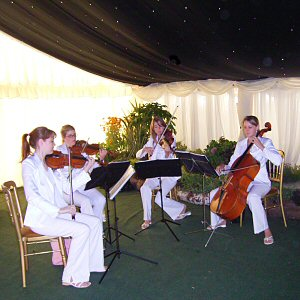 The stylish Angels string quartet